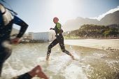 stock photo of triathlon  - Participants running into the water for start of a triathlon - JPG