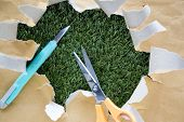 foto of cut torn paper  - scissors and cutter on torn paper with green grass background - JPG