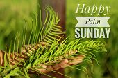 Palm Leaves In Hand. A Young Woman Holding Palm Leaves. Palm Leaves Background. Palm Sunday Concept. poster