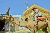 pic of nubian  - Senior tourist riding camel in Nubian village - JPG