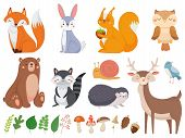 Cute Woodland Animals. Wild Animal, Forest Flora And Fauna Elements Isolated Cartoon Vector Illustra poster