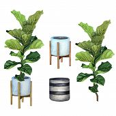 Indoor Plants In A Pot Set . Watercolor Plants Set. Home Plants Potted. Hand Drawn Illustration. Zz  poster