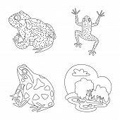 Vector Illustration Of Amphibian And Animal Logo. Set Of Amphibian And Nature Vector Icon For Stock. poster