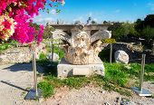 Remains Of The Corinthian Classic Order Column With Flowers, The Ancient Agora Of Classical Athens,  poster