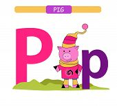 Letter P And Funny Cartoon Pig. Animals Alphabet A-z. Cute Zoo Alphabet In Vector For Kids Learning  poster