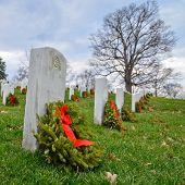 Постер, плакат: Надгробные камни на Арлингтонском национальном кладбище Вашингтон DC США