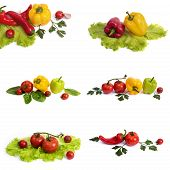 Yellow And Red Sweet Pepper With Tomatoes. Red Sweet Long Pepper With Yellow Sweet Pepper And Tomato poster