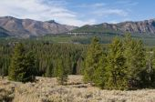 picture of beartooth  - Woods and mountains along Beartooth Highway in northern Wyoming - JPG
