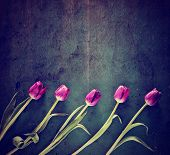 tulips on a wooden board. good for mother's day, easter, valentine's day or other holidays symbolizi