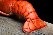 stock photo of lobster tail  - Lobster tail on wood and black background - JPG