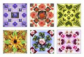 stock photo of six-petaled  - Set of six floral squares made of natural flowers in pastel colors - JPG