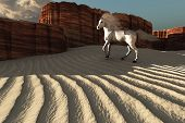 stock photo of bucking bronco  - A beautiful white stallion stands near weathered canyon cliffs - JPG