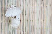 pic of eatables  - eatable mushrooms on traditional mat for cook with copyspace - JPG