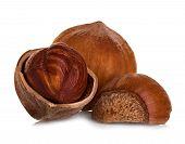 picture of hazelnut tree  - Hazelnuts close - JPG