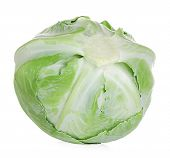 picture of water cabbage  - White cabbage close - JPG