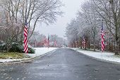 picture of veterans  - Snow - JPG