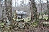 picture of gatlinburg  - Vintage log cabin in the woods - JPG