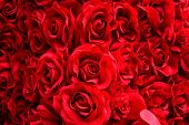 picture of bunch roses  - Background Texture of Red Artificial Rose or Bunch of Red rose - JPG