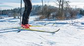 pic of nordic skiing  - Cross country skiing - JPG