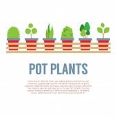 pic of plant pot  - Pot Plants In Long Wooden Pot Vector Illustration - JPG