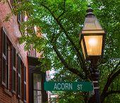 picture of acorn  - Acorn street Beacon Hill cobblestone Boston in Massachusetts USA - JPG