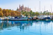 foto of marina  - Palma de Mallorca port marina in Majorca with Cathedral church Balearic Islands - JPG