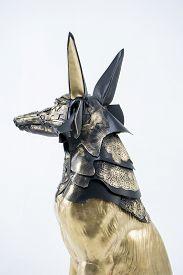 picture of jackal  - Mythology - JPG