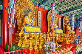 picture of lamas  - Interior view of Yonghegong Lama Temple - JPG