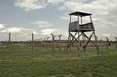 stock photo of auschwitz  - Prisoners barrack and observation tower at Auschwitz Birkenau concentration camp - JPG