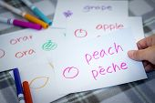 French; Learning New Language With Fruits Name Flash Cards poster