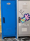picture of slut  - School Violence 2 is a photo of two school lockers one a females has derogatory words painted on it - JPG