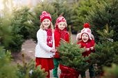 Kids Selecting Christmas Tree. Xmas Gifts Shopping. poster
