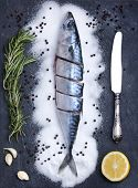 Flatlay Of Slice Fresh Fish On A Slate Stone Texture Plate Decorated With Rosemary, Garlic, Lemon Sl poster