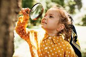 Cute Happy Kid With Magnifying Glass Exploring The Nature Outdoor. Adorable Little Explorer Girl Pla poster