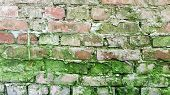 Weathered Old Red Terracotta Brick Wall With Green Moss And Grunge Cement Joints. Brick Textured Bac poster