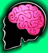 picture of temporal lobe  - Illustration of human brain in green background - JPG
