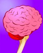 stock photo of temporal lobe  - Illustration of human brain in violet background - JPG
