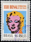 BRAZIL- CIRCA 1996: A stamp printed in Brazil shows the 23 International Biennial of Sao Paulo portr