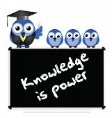 Knowledge message