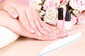 picture of french manicure  - Beautiful woman hands with french manicure and flowers on wooden background - JPG
