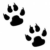 picture of paw-print  - 3d dog foot prints isolated in white - JPG