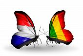 foto of holland flag  - Two butterflies with flags on wings as symbol of relations Holland and Mali - JPG