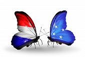 picture of holland flag  - Two butterflies with flags on wings as symbol of relations Holland and Micronesia - JPG
