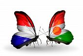 picture of holland flag  - Two butterflies with flags on wings as symbol of relations Holland and Niger - JPG