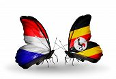 picture of holland flag  - Two butterflies with flags on wings as symbol of relations Holland and Uganda - JPG