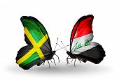 stock photo of iraq  - Two butterflies with flags on wings as symbol of relations Jamaica and Iraq - JPG