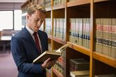 pic of lawyer  - Handsome lawyer in the law library at the university - JPG