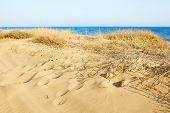 image of sea oats  - Sand Dunes at the Mediterranean sea - JPG