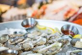 image of oyster shell  - A tray of fresh oysters on the half shell on ice with sauce - JPG