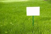 picture of lawn grass  - Lawn with green grass and white plaque on the lawn - JPG